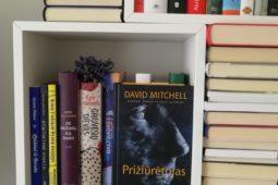 David Mitchell – Prižiūrėtojas