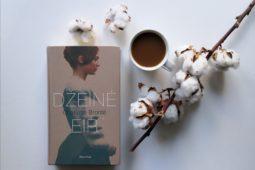 Charlotte Bronte – Džeinė Eir