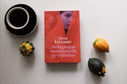 Elena Ferrante – Melagingas suaugusiųjų gyvenimas